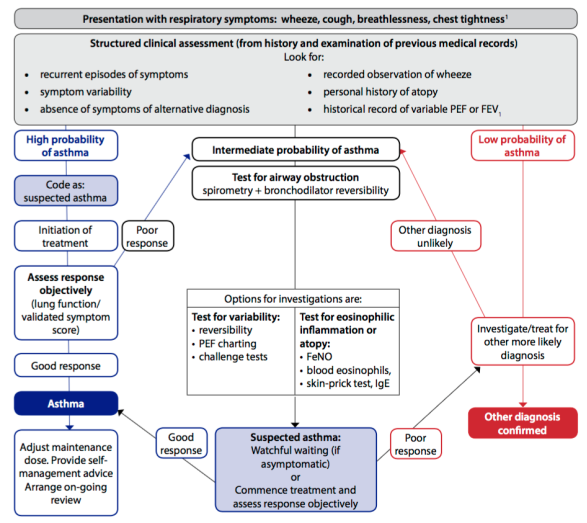 Diagnostic algorithm for asthma